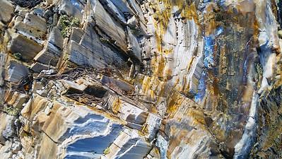 Barkscape: Petrified Ginko Tree | Ginko Petrified Forest State Park, Vantage, WA