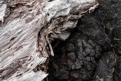 Barkscape: Kane and Pele | Hawaii Volcanoes National Park