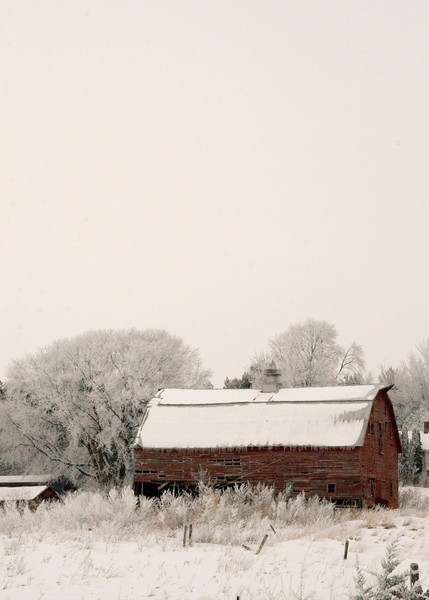 Frozen Red Barn - Verticle