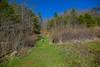 Barnardsville 150 eggna-0507