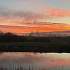 Barnby Dun sunset    iPhone XS