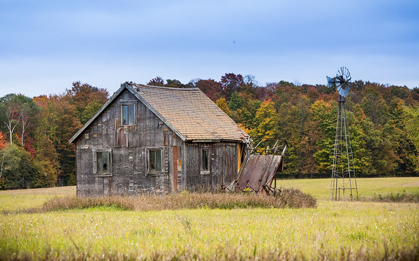 The Cabin in the Field