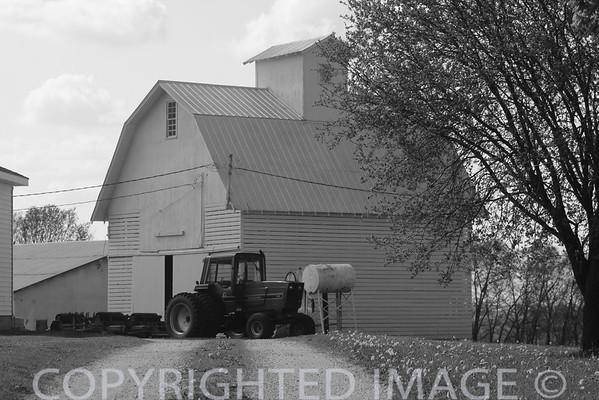 Barns (B & W)