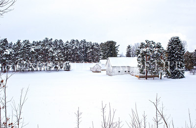 Snowy Barn and Farm buildings: Leelanau County, Michigan