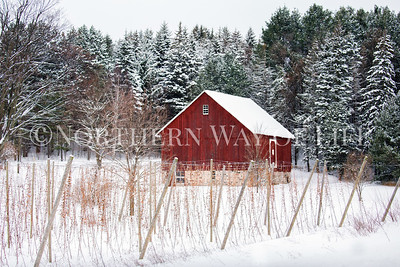Red Barn in the snow; Leelanau County