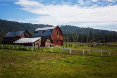 Old barn and outbuildings farm near Loon Lake WA 5-31-15