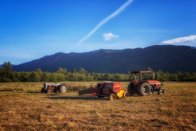 Making Hay Meadowbrook Farm Golden Hour