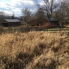 Green Pond Farm