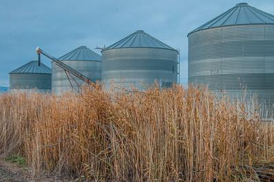 Barns and Farms