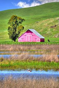 pink barn-5975