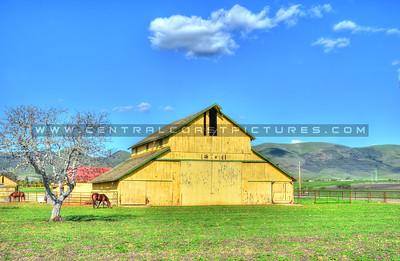 nipomo yellow barn_5856