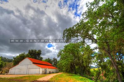 paso robles barn_3654