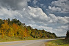 Fall Colors near Marble Hill, MO