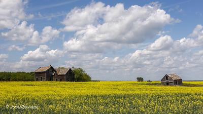 Superfluous Prairie Farmstead - Canadian Prairie (SK)