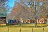 DSC_0073 Barns w Trees Dec 3 2016