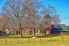 DSC_0059 Barns w Silo Fall trees Dec 3 2016