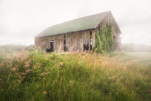 Barn in a misty field