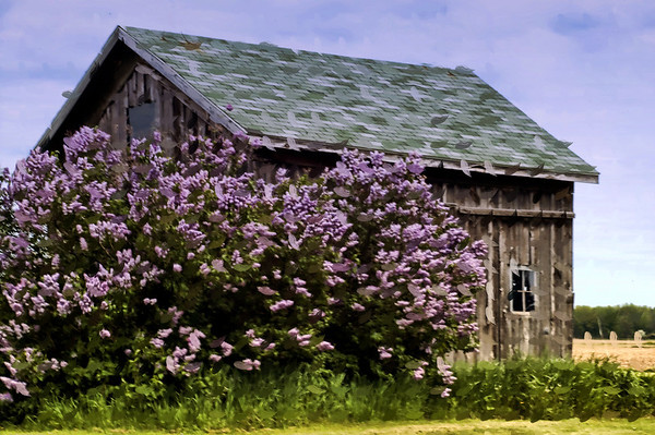Barns and Old Buildings