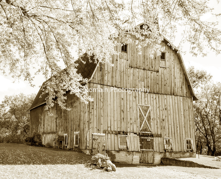 """My aunt and uncle had a farm outside of Faribault , MN.  This is the side of the barn that faced the house and yard - I considered that the """"front"""" of the barn.  The barn used to house cows and pigs - and hay was stored in the loft."""