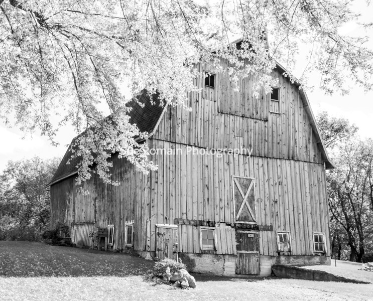 "My aunt and uncle had a farm outside of Faribault , MN.  This is the side of the barn that faced the house and yard - I considered that the ""front"" of the barn.  The barn used to house cows and pigs - and hay was stored in the loft."