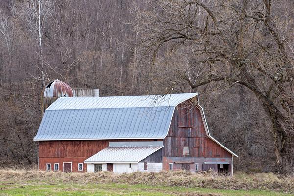 Barn in Swamp