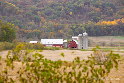 Fall in Grant County