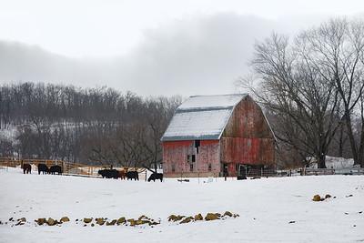 Beef Barn