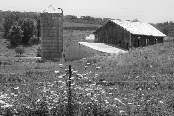 Barn with Arched Vents