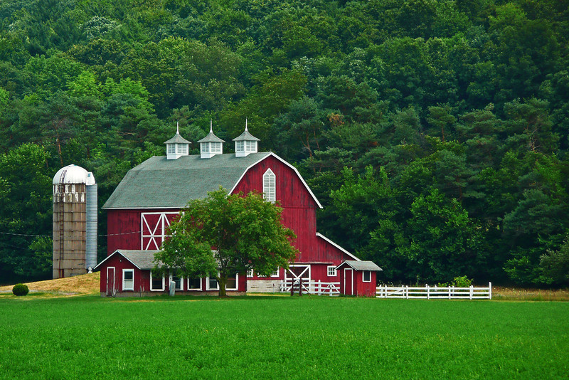Lycoming County, PA - 2010