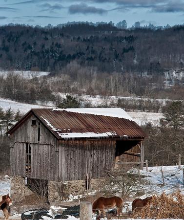 Barns of New York State