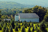 Pennsylvania - 2009