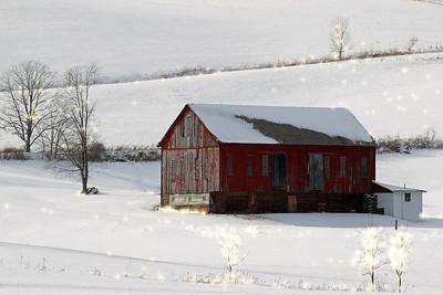 """Red Barn"""