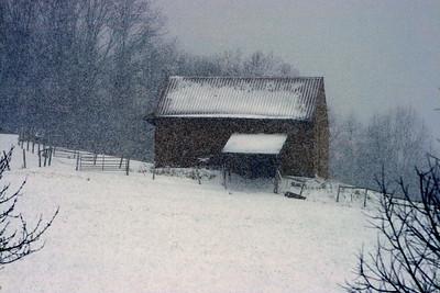 """Winter Storm"""