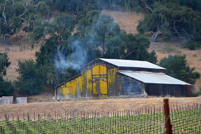 Barn just after the firecracker explosion (used to keep birds away from the grapes).