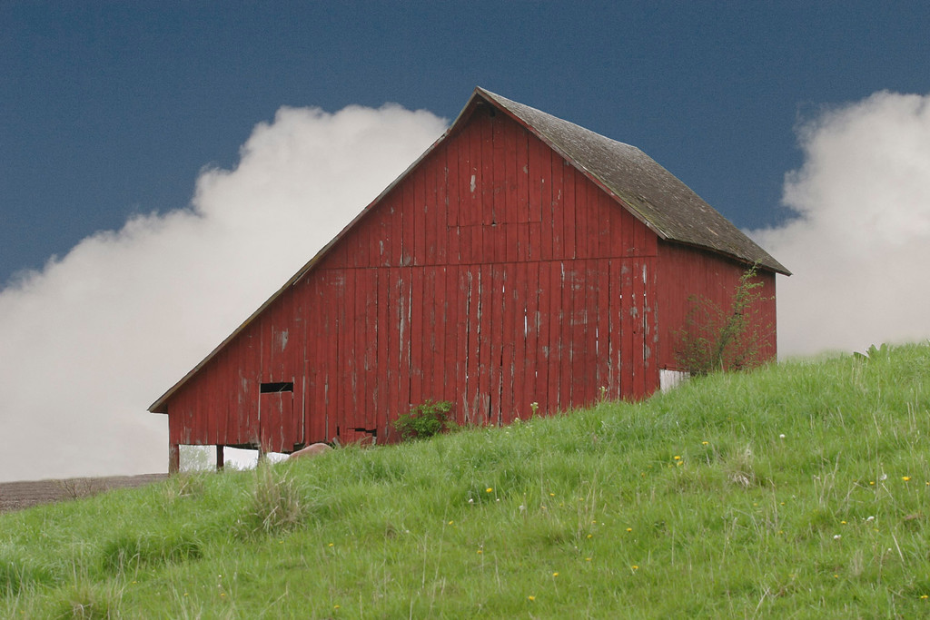 Reverse Salt box- Barn