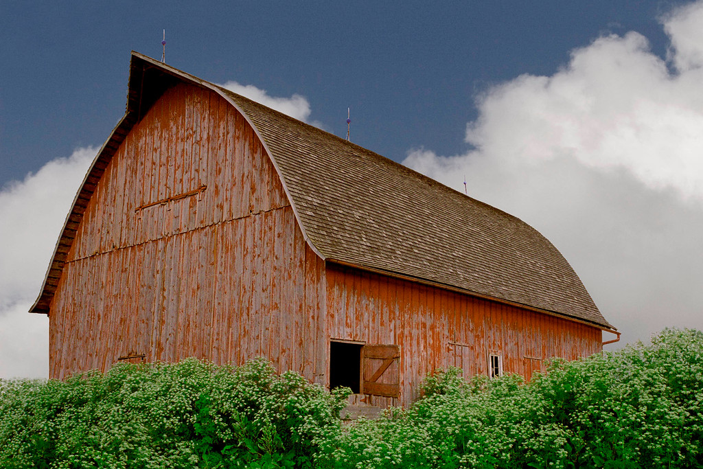 Bailey's 48x36 pointed Arch Roof Barn.