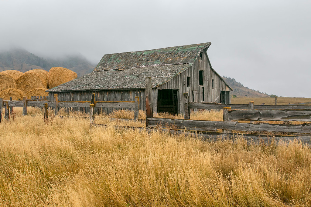 Bear Butte SD 1920 Barn