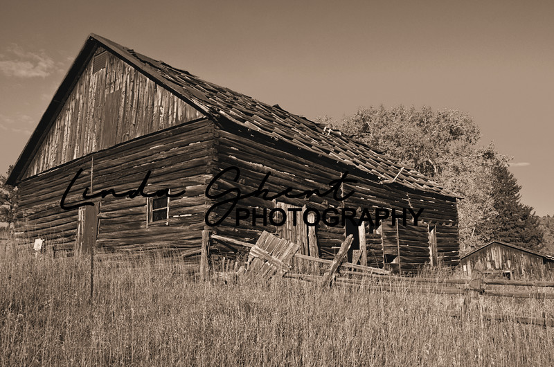 Cherokee Park Barn, Sepia