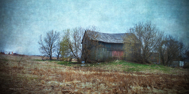 saddleshapedbarn24x12