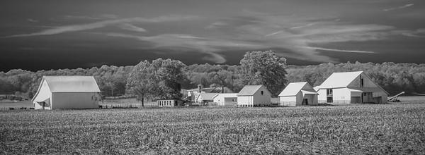 Amish Farm in IN in BW