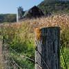 700 Fence Posts