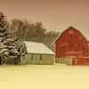 Creamsicle Farm