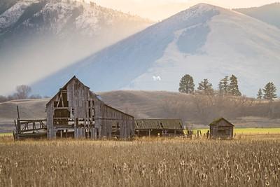 Transitions - Missoula, Montana