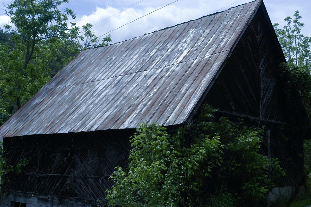 DITLOA2009_0857