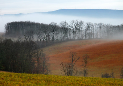 February 4, 2013. I loved the layers of color and the fog when I saw this, it was a beautiful scene. Berkeley Springs, WV.