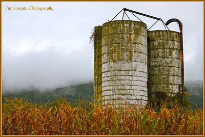 * October 8, 2011. Silos, corn and foggy mountain. Boonsboro, MD.