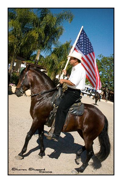 """Fun Show 6/ 2006 """"HORSES!"""""""