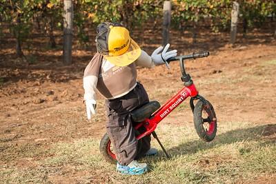 Scarecrows-Nathaniel-Mason-3410