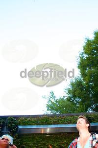 DFP_6611