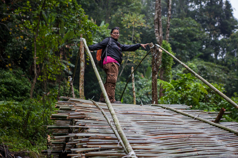 A bamboo bridge on the way to Bat Cave, Basar, Arunachal Pradesh, India